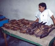 MALDIVI: mesto Male – čar ribarnice in tržnice