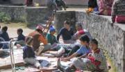 Okoli 3000 primerov zlatenice v Nepalu