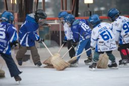 Hokej Bled