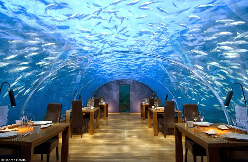 """Maldivi – restavracija Ithaa (""""mati biserov"""")"""