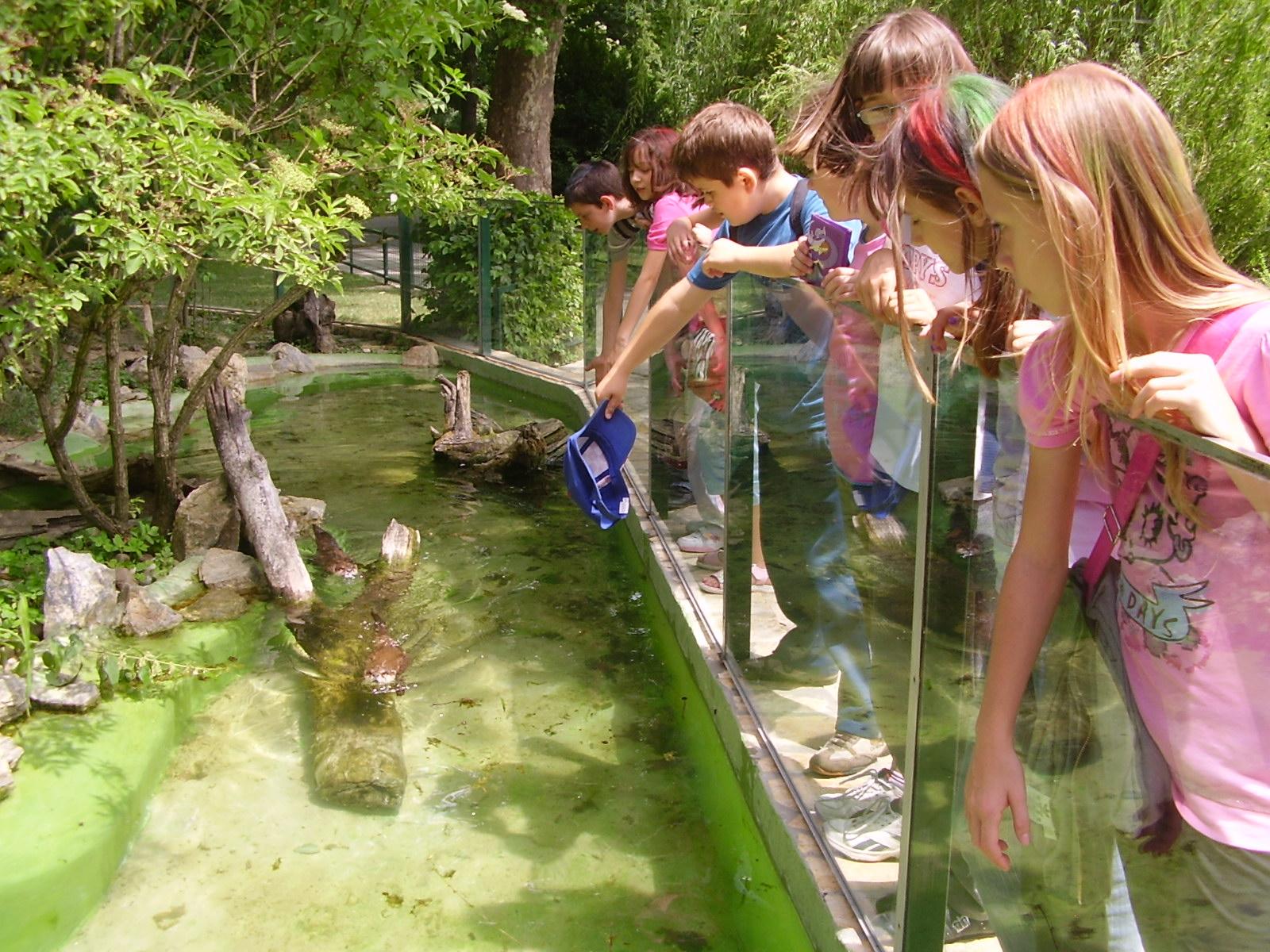 Poceni in doživeta družinska pot v zagrebški živalski vrt