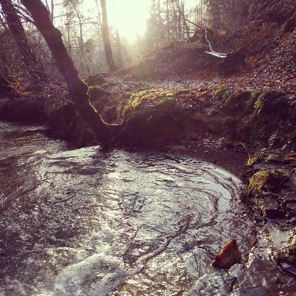 VODA – še mnogo vode bo preteklo, dokler …